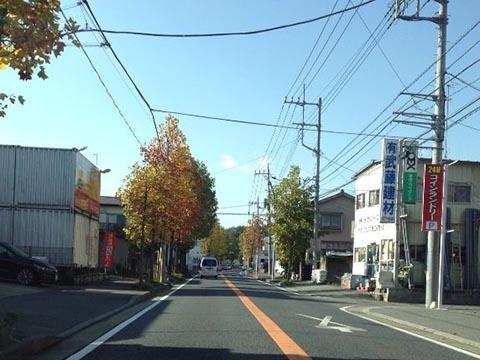 秋模様の街道
