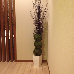 通路の植木