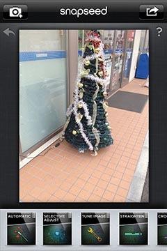 クリスマスツリーの写真を開く