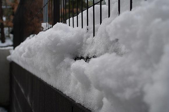 フェンスの雪