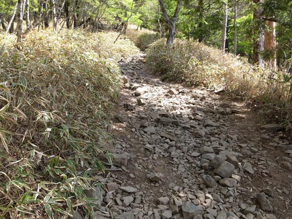 ゴロゴロ岩の道