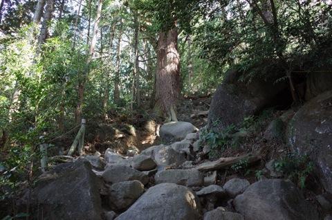 御幸ヶ原コース登山道